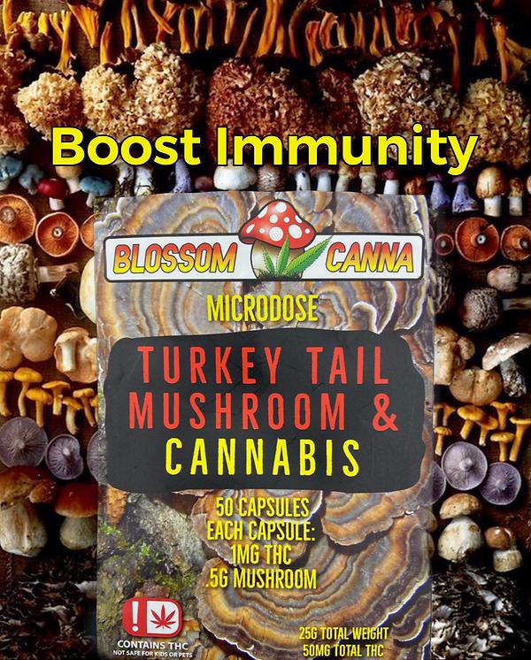 Turkey Tail Boost Immunity Mushrooms and Cannabis Blossom Canna
