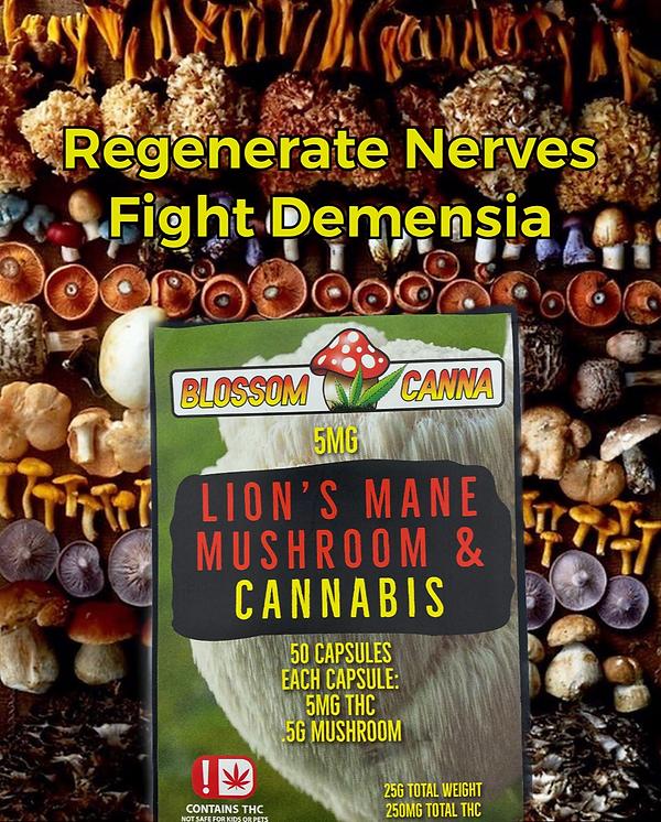 Lions mane regenerate nerves Mushrooms and Cannabis Blossom Canna