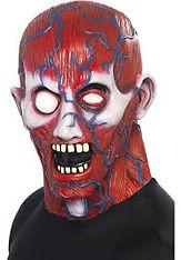anatomy mask.jpg