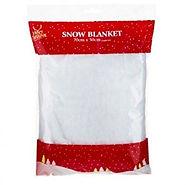 snow blanket.jpg