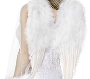 white feather wings.jpg