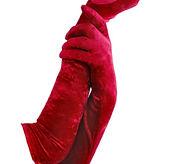red velvet gloves.jpg