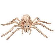 skele spider