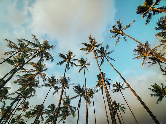 Molokai_Luxury_Vacations.jpeg