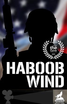 Haboob Wind.png