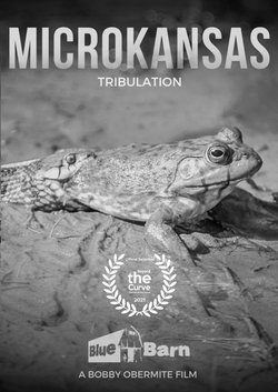 MicroKansas - Tribulation.png