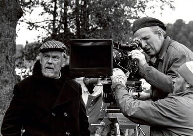 Bergman 5.jpg