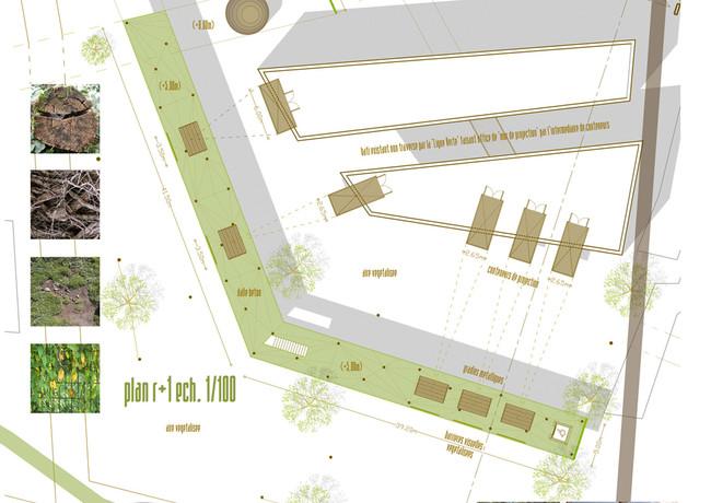Panel 6 site 1 ech 100.jpg
