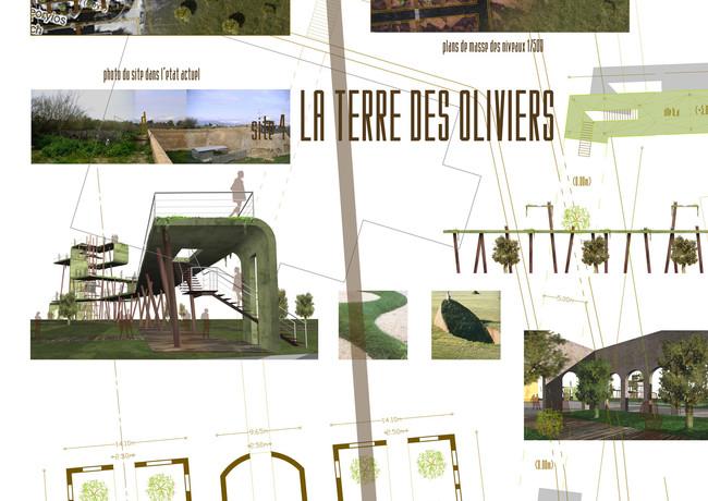 Panel 11 site 4 ech 500.jpg