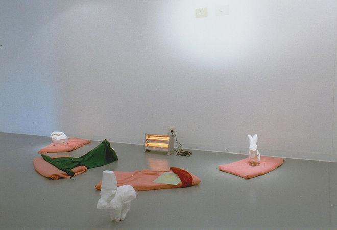 Contemporary Visual Artist