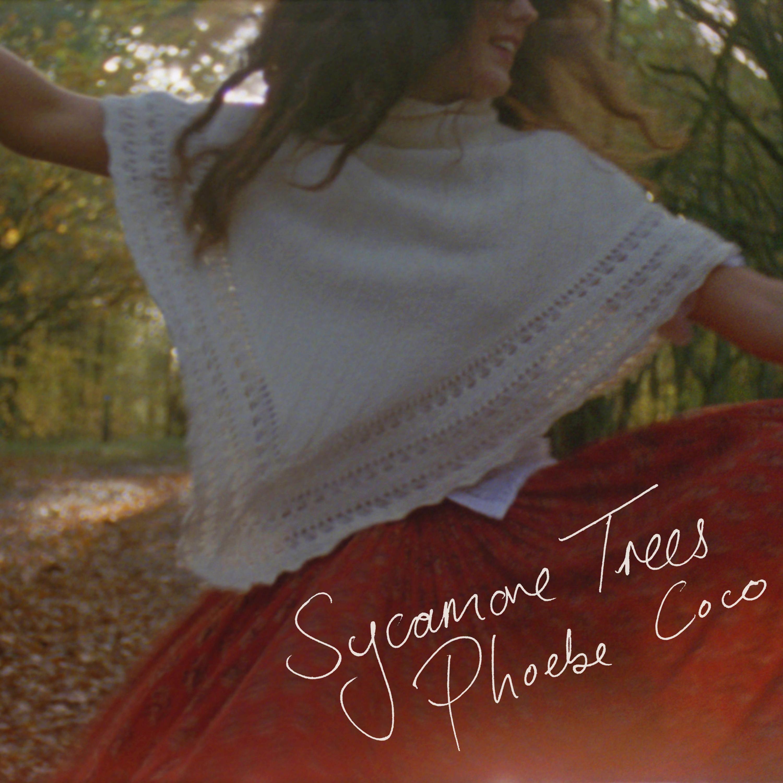 Sycamore Trees Phoebe Coco