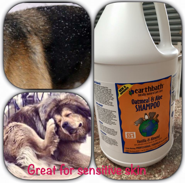 sensitive dog shampoo