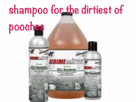 Tip- always use the best shampoos to get the best finish