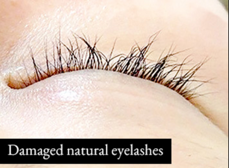Do Lash Extensions DAMAGE the Natural Lashes?