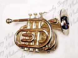 Trompeta de bolsillo (POCKET TRUMPET