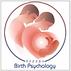 Prenatal_and_Perinatal_Psychology_Educat