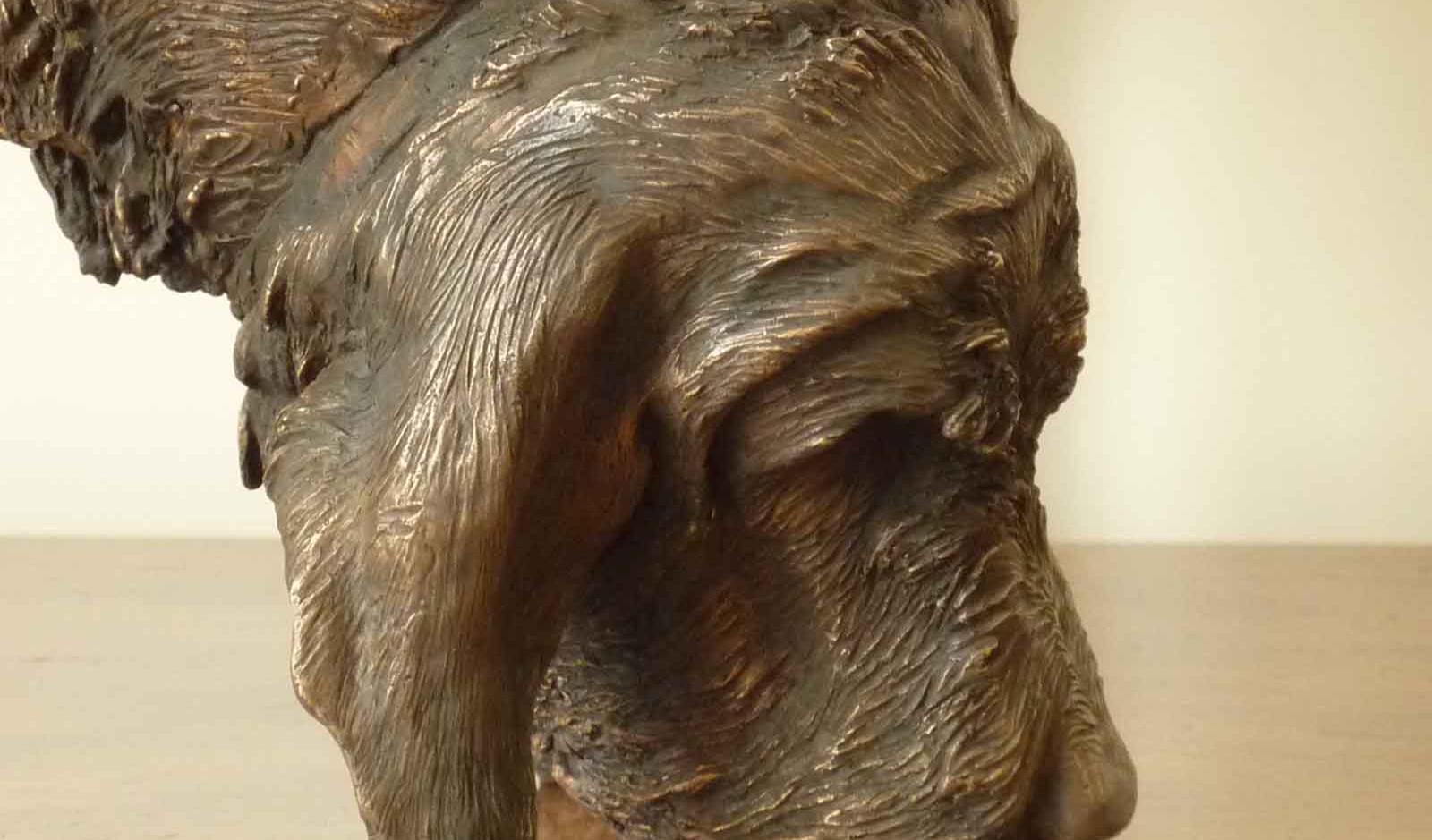 Italian Spinone bronze sculpture