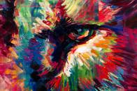 Disco-Lion-eye-right.jpg