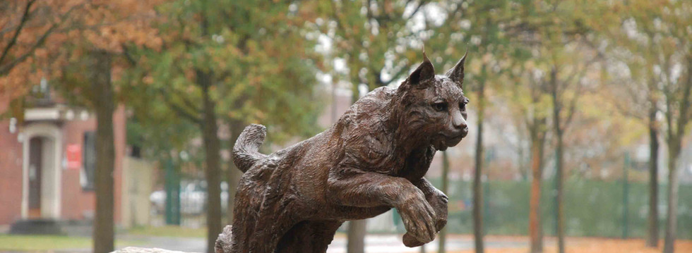 Eurasian Lynx bronze sculpture