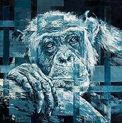 Wistful-Chimp.jpg