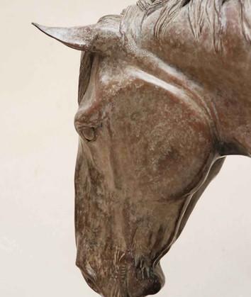 Irish Draft horse bronze sculpture