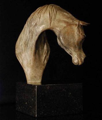 Arabian Arab horse bronze sculpture