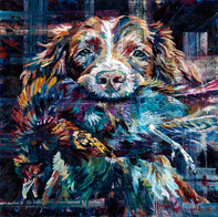 The Obedient Spaniel
