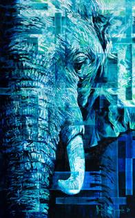Blue-Bull.jpg