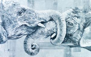 Elephant Embrace
