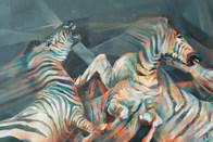 Tehnicolour zebra (detail)