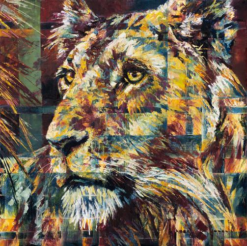 Her Lion Eyes