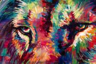 Disco-Lion-eyes.jpg
