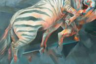 Technicolour zebra (detail)