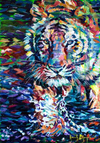 Wading Tiger