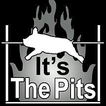 Its the Pits BBQ.jpg