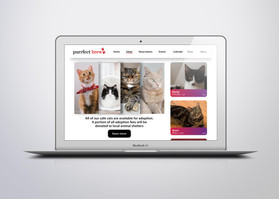 Purrfect Brew Adoption Page