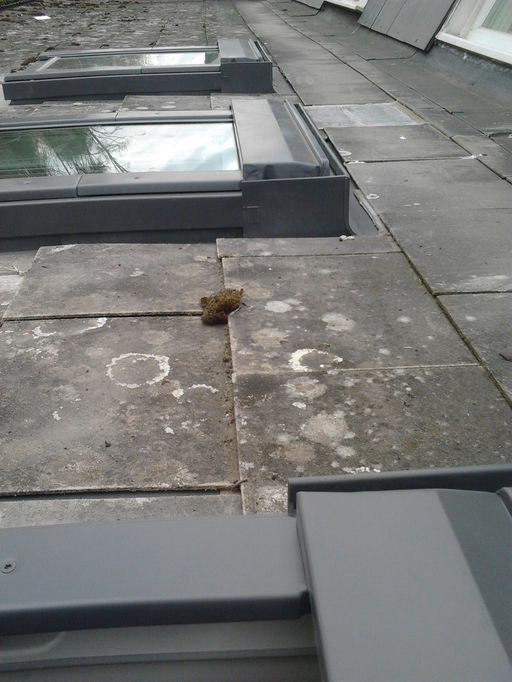 Turner Roof Windows Wix Com