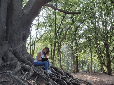 Hoe stress, bos en AT met elkaar te maken hebben.