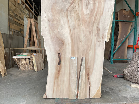 """Spalted Maple (1381) 24"""" L x 9"""" W x 1.25"""" T"""