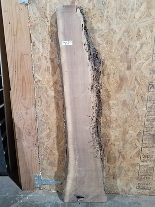 "Black Walnut (1320) 59"" L x 6-13"" W x 2"" T"