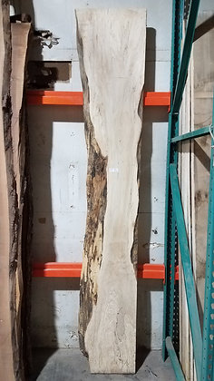 """Spalted Maple (1221) 107"""" L x 9-18"""" W x 2.25"""" T"""