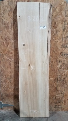 """Cottonwood (1284) 60"""" L x 13.5-17.5"""" W x 2.25"""" T"""