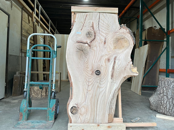 """Pin Oak (1370) 64"""" L x 19-39"""" W x 2.5"""" T"""