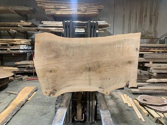 """Pin Oak (1433) 65"""" L x 36-41"""" W x 2.75"""" T"""