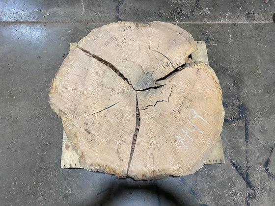 """Red Oak (1449) 49"""" L x 44"""" W x 5"""" T"""