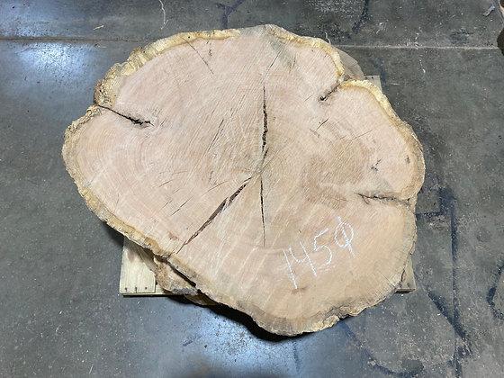 """Red Oak (1450) 50"""" L x 42"""" W x 5"""" T"""