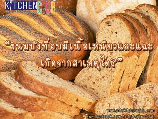 ขนมปังที่อบแล้วมีเนื้อเหนียวและแฉะ เกิดจากสาเหตุใด?