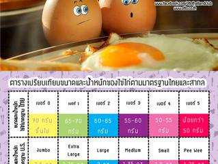ไข่ไก่มีกี่ขนาด?