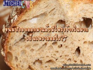 ขนมปังอบออกมาแล้วมีรูหรือโพรงข้างในมากเกินไป เป็นเพราะอะไร?