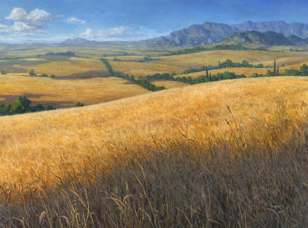 Plains by Steven Belledin